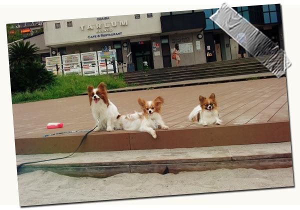 【マツワン★グランプリ】 06