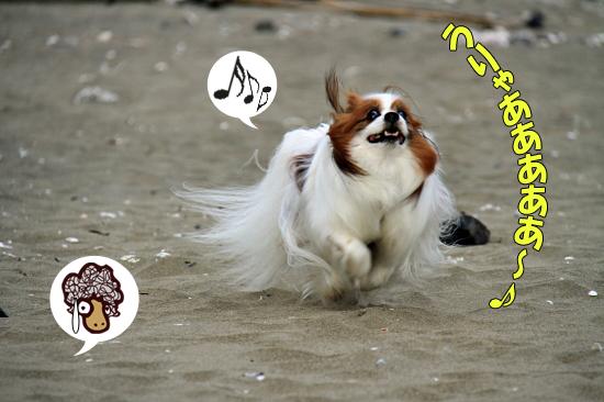 サザビー、砂浜に立つ!! 03