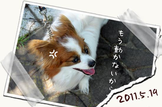 【Wan 2011】(中篇) 05