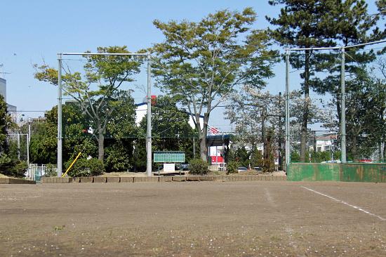 葉桜 01
