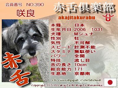 390-sakira-2007