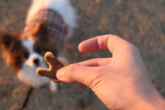 クッキーの正体 09