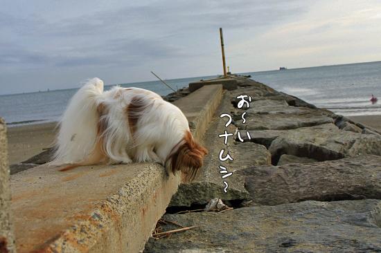 【サザカレ2013】 04