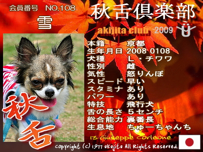 aki2009-108-setu