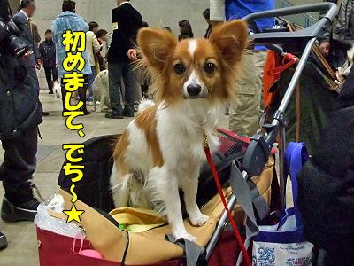 2009★千葉インター その2�