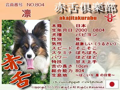 804-rin-2007