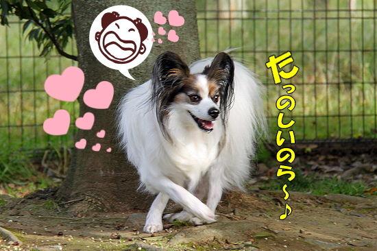 守谷へGO★ 07