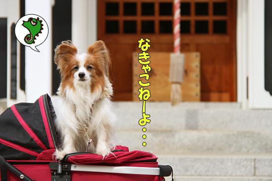 成田山★リベンジ 06