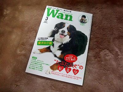 月刊「Wan」3月号撮影★秘話(前編)�