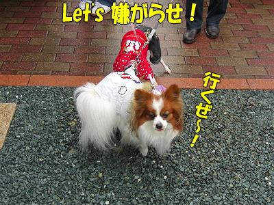 静岡へ・・・�
