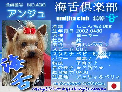 umi2009-430-anjyu