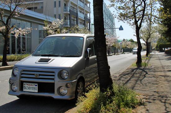 葉桜 13