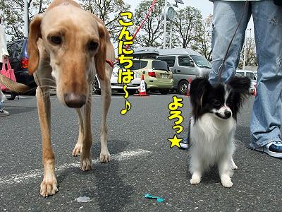 アジアインター2009(中編)24