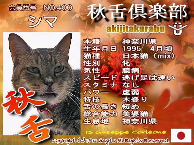 400-shima-aki
