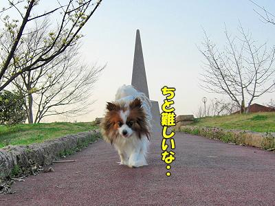記念碑撮影ww�