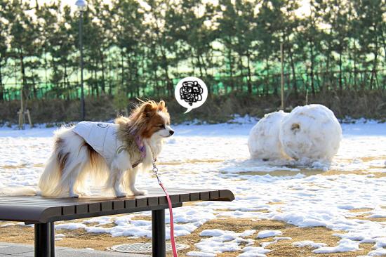 雪の魔法 01