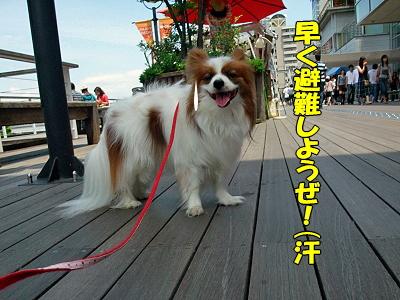 お台場オフ★(後篇)�