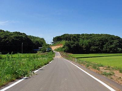 夏休み企画 No7�