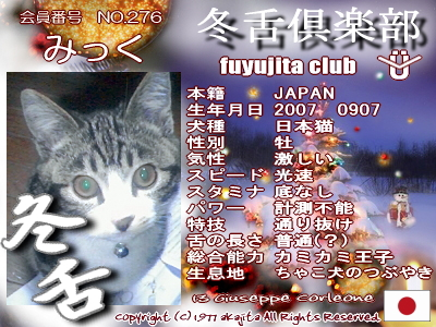 276-mick-fuyu