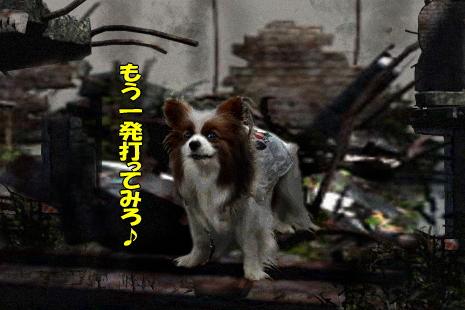 茂原テロ★27