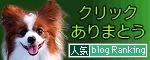 ブログランキング★2009.06.01