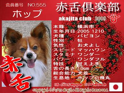 555-hoppu-2009aka
