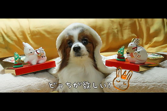 干支人形プレゼント企画 04