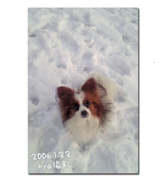 雪の魔法 06
