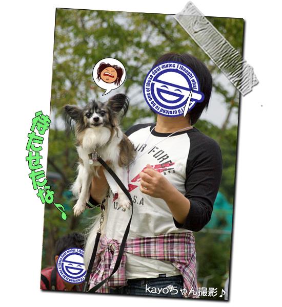 【サザオフ・2014】★その4 急速充電中〜! 02