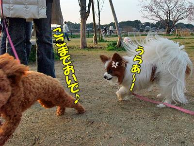 牛若丸★�