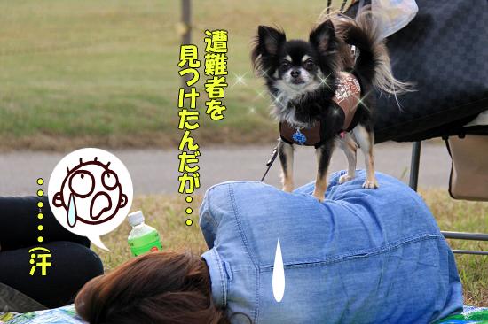 【サザオフ2011】 part5 19