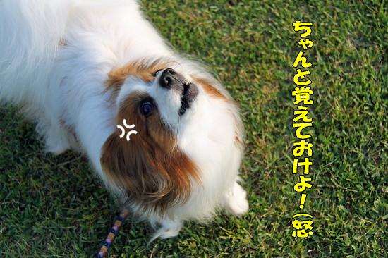 【Wan 2011】(プロローグ) 03