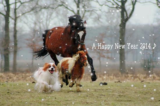 【NEW YEAR 2014 ★☆★】 01