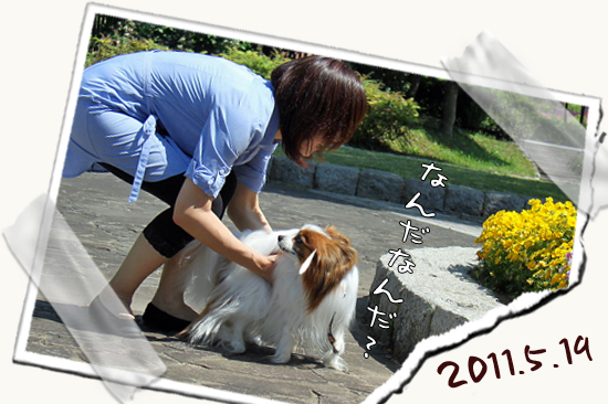 【Wan 2011】(中篇) 07