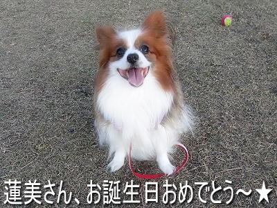 誕生日おでめとう★