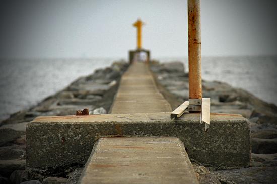 サザビー、砂浜に立つ!! 14