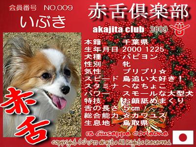 009-ibuki-2009aka