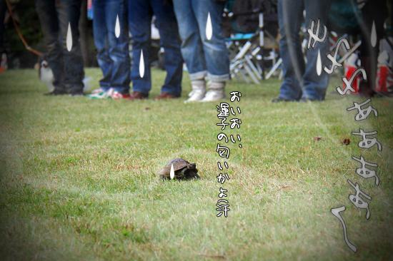 【サザオフ2011】 part4 22