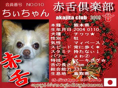010-chiichan-2009aka
