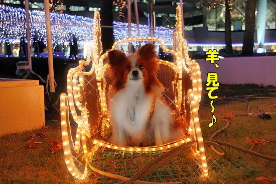 光の馬車★☆★(後篇) 10