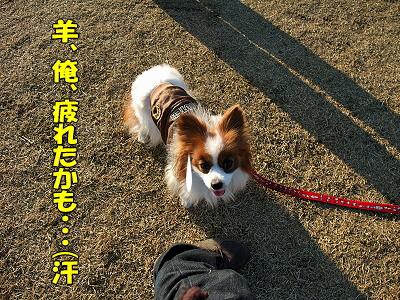 月刊「Wan」3月号撮影★秘話(後編)�