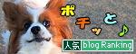 ブログランキング★2009.03.01
