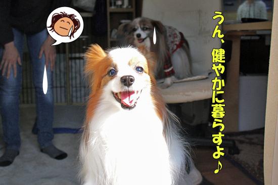 はぴばー・ハナちゃん・16th★☆★ 02