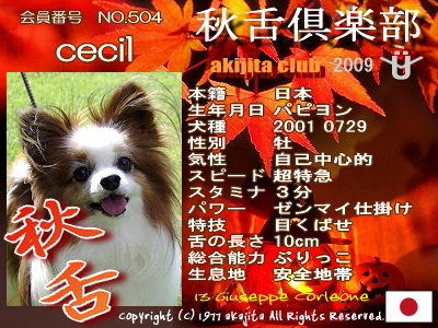 aki2009-504-cecil