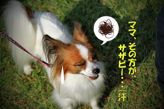 【サザオフ2011】 part6 18