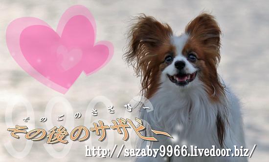 【サザオフ2011】招待状・配送開始 01