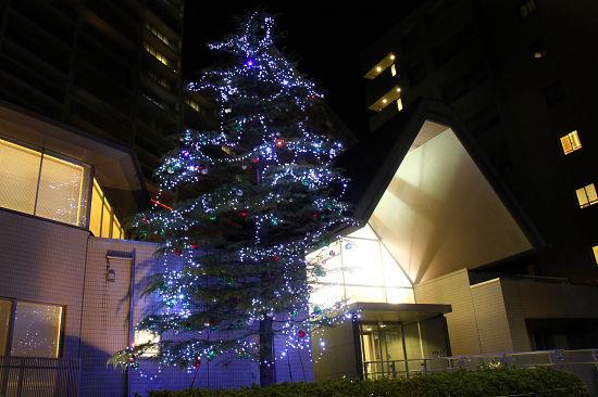 もうすぐクリスマス★ 15