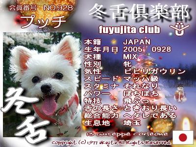 928-pucchi-fuyu