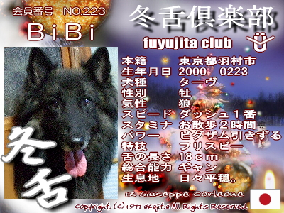 223-bibi-fuyu