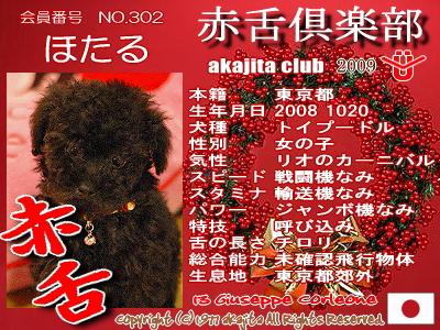 302-hotaru-2009aka
